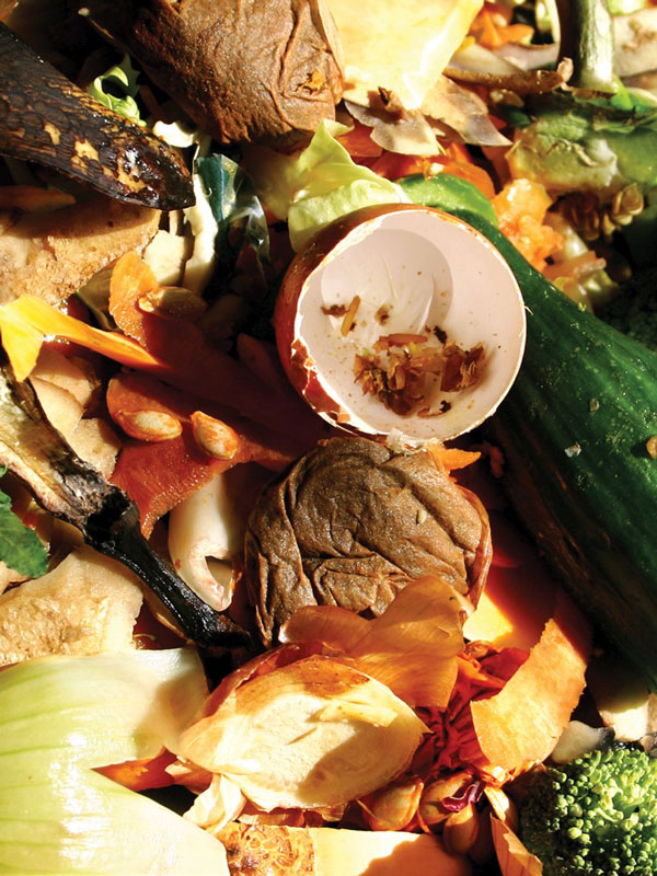 Food-waste-image