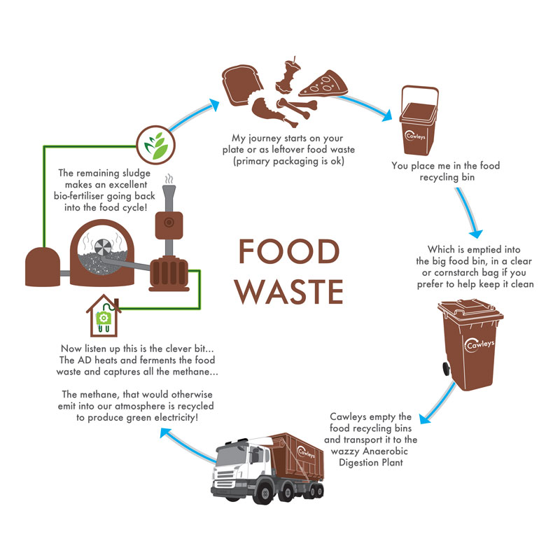 food-waste-circular-graphic